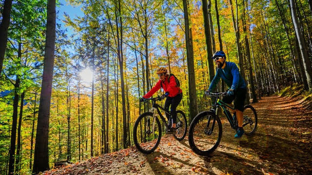 Ebikes in the Forest of dean